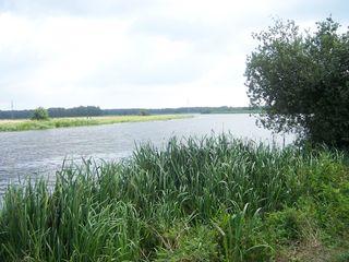 Aller river